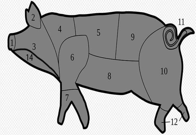 Parti del maiale