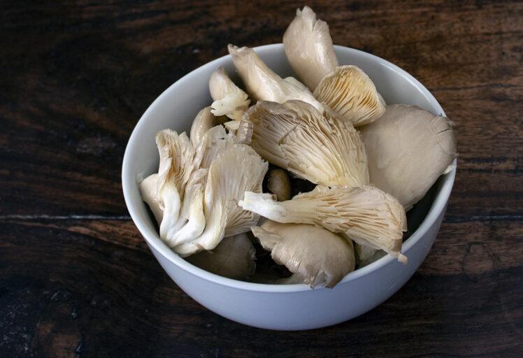 Funghi pleurotus in scodella
