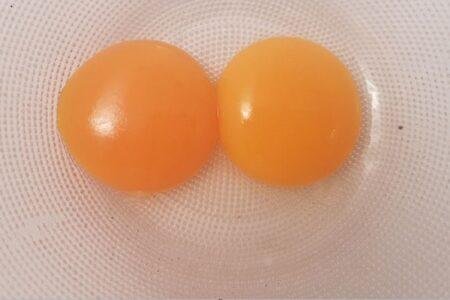 Tuorli d'uovo